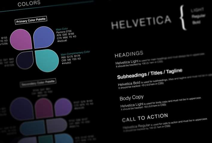 Brand Guidelines With Sample Color Palettes And Font Types